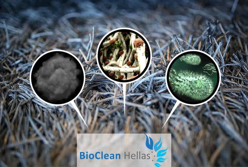 Στεγνός Βιολογικός Καθαρισμός Χαλιού στον χώρο σας από την BioCleanHellas!